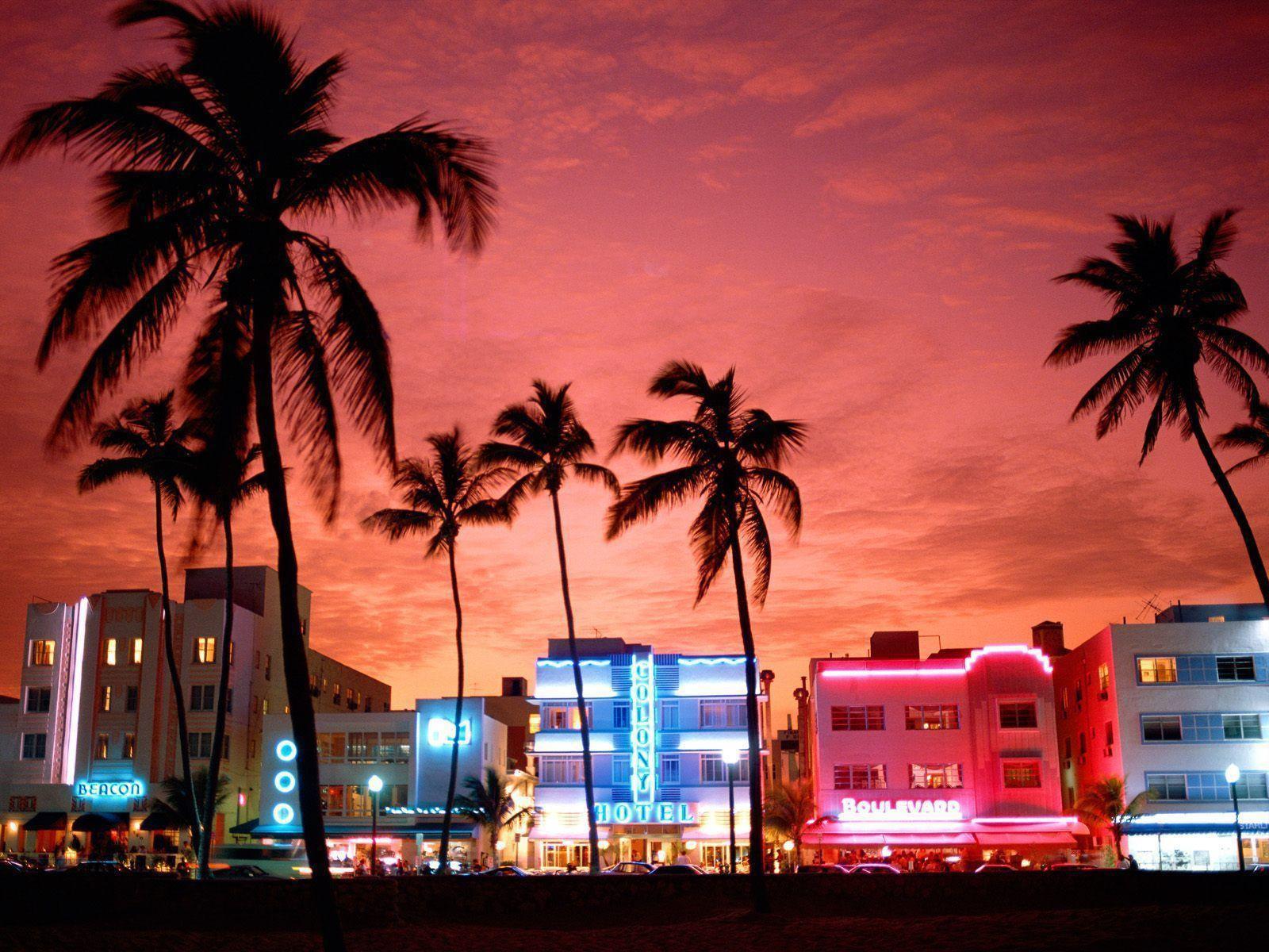 Enjoy the night life in Miami.